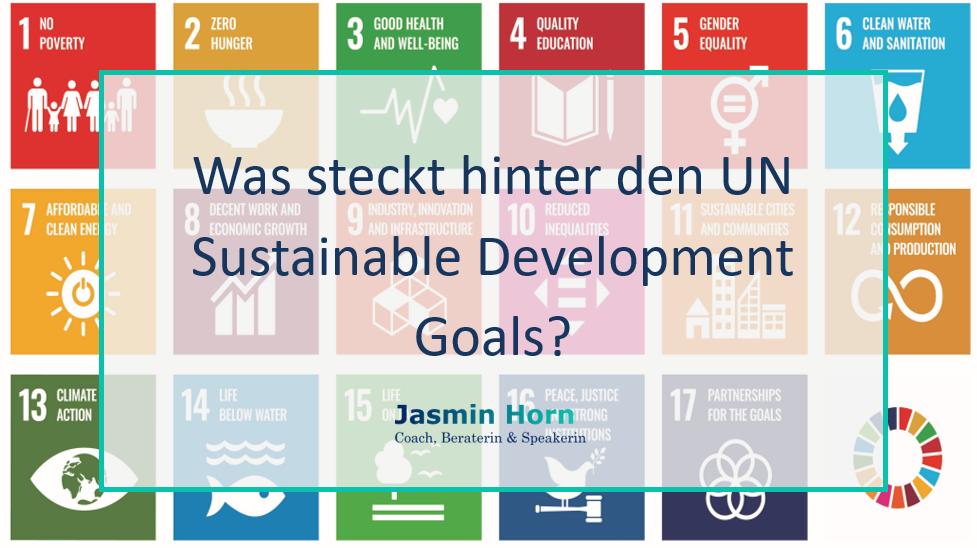 #01 4 Fakten, die du über die UN Sustainable Development Goals wissen solltest.