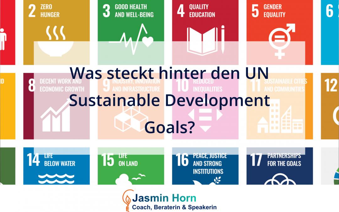 #01 Vier Fakten, die du über die UN Sustainable Development Goals wissen solltest.